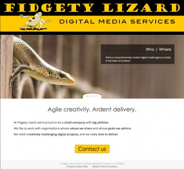 Fidgety Lizard website